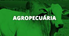 Agropecuária (link)