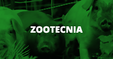 Zootecnia (link)